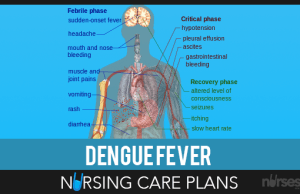 Dengue-Hemorrhagic-Fever-NCP