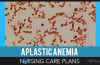 Aplastic-Anemia-Nursing-Care-Plans