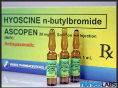 HNBB Drug Study