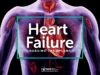 16+ Heart Failure Nursing Care Plans