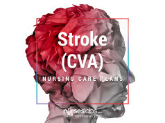 8 Cerebral Infarction (Stroke) Nursing Care Plans (NCP)