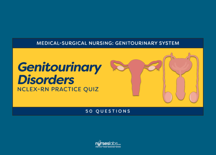 Genitourinary System Disorders NCLEX Practice Quiz #1 (50 Questions)