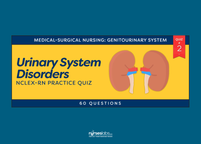 Urinary System Disorder NCLEX-RN Practice Quiz #2 (60 Questions)