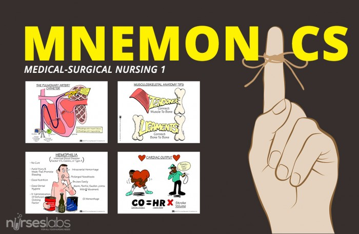 12 lead mnemonic related keywords amp suggestions 12 lead mnemonic