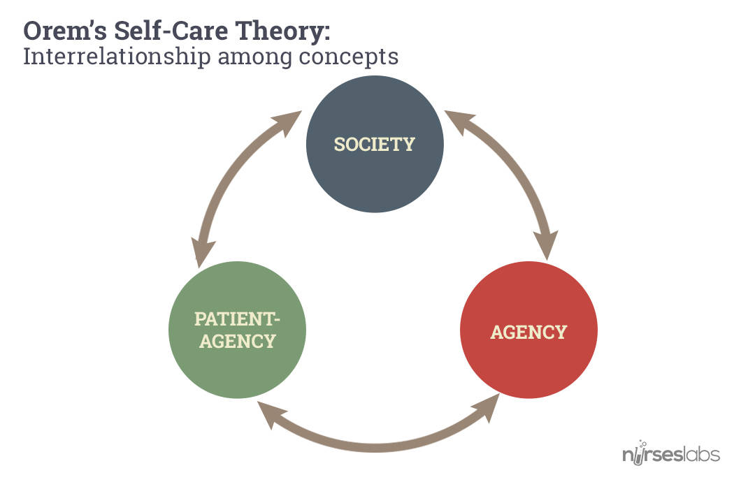Orem's Self-Care Theory: Interrelationship among concepts. Click to enlarge.
