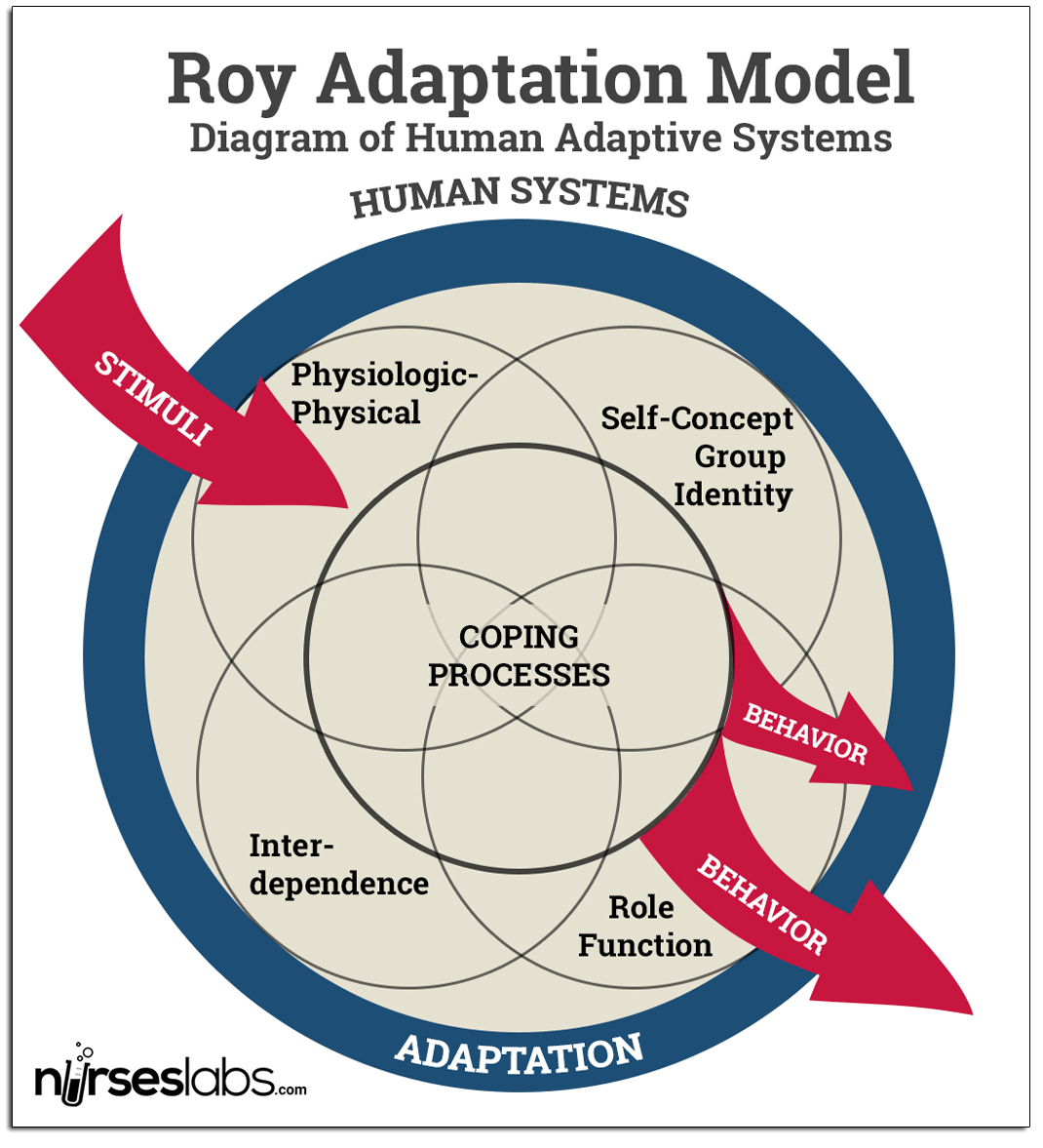 Diagrammatic Representation of Roy's Human Adaptive Systems.