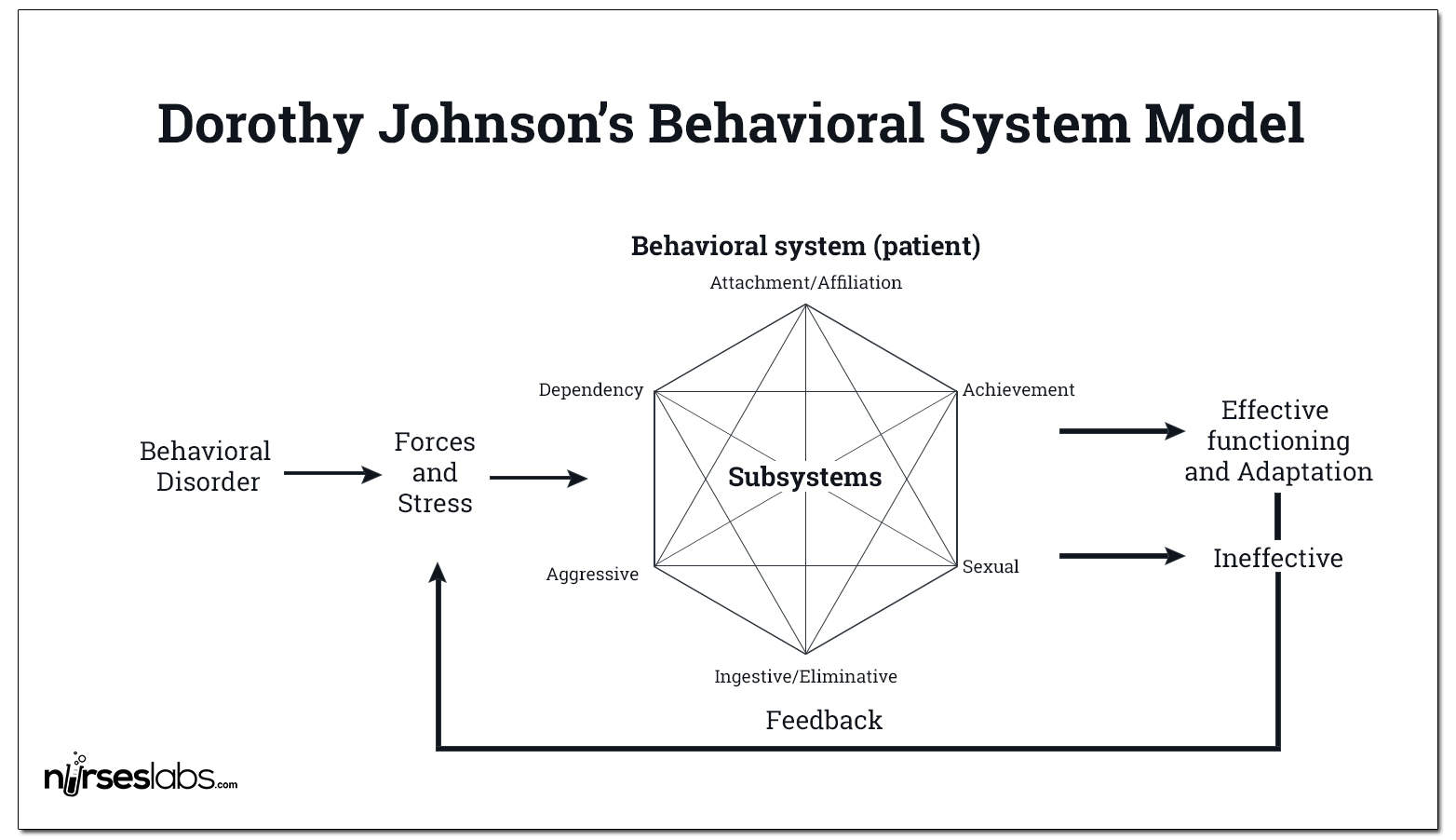 Johnson's Behavioral System Model