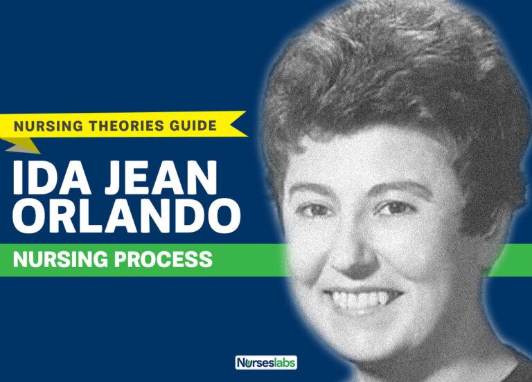 Ida Jean Orlando Nursing Process Theory 2019