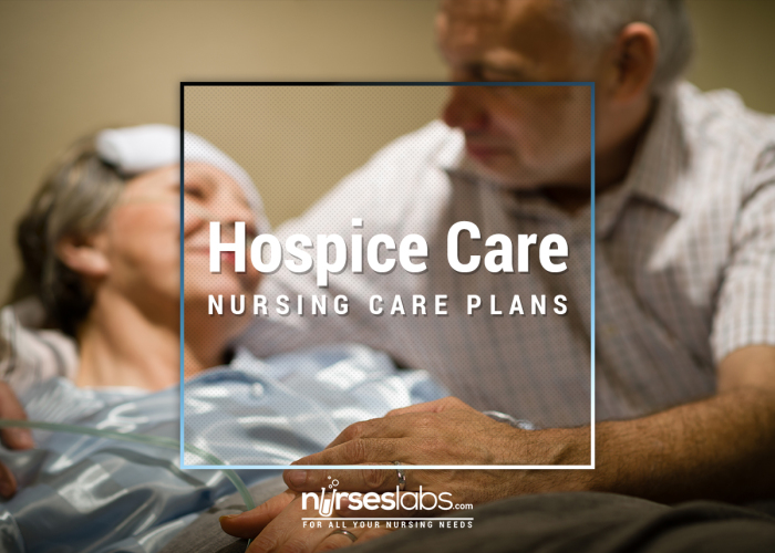 hospice programs Hospice of the chesapeake foundation is a nonprofit organization that raises funds and awareness in support of hospice of the chesapeake's mission of caring for life throughout the journey with illness and loss.