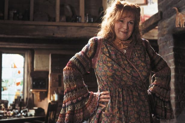 Julie Walters AKA Molly Weasley in the Harry Potter series. Image via: Mirror.co.uk