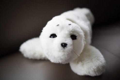 Paro the Therapeutic Robot seal. Via: TheStar.com