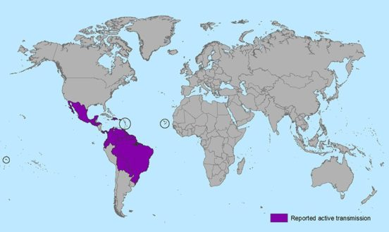 Countries and territories with active Zika virus transmission. Image via: CDC.gov