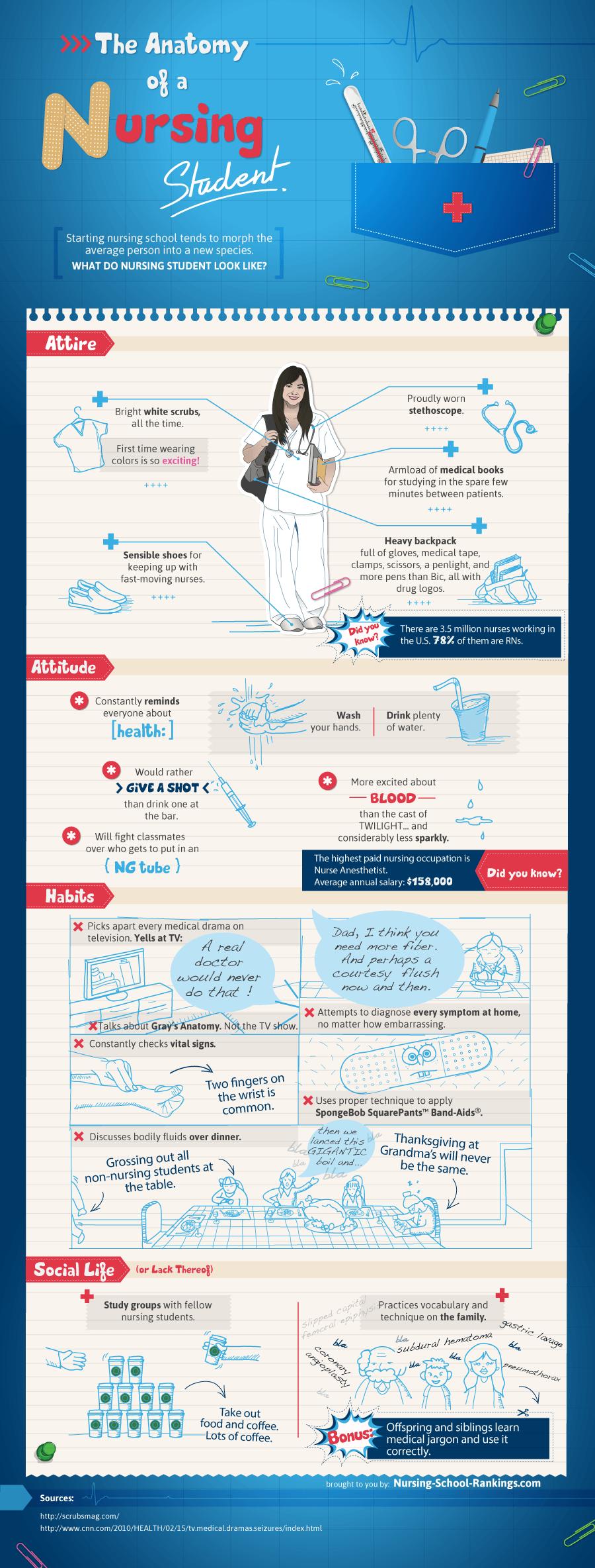 The Anatomy of a Nursing Student: Nursing Infographic