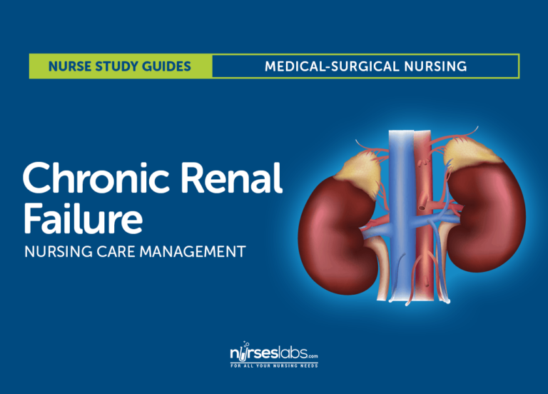 Chronic Renal Failure Nursing Care and Management: Study Guide
