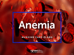 4 Anemia Nursing Care Plans