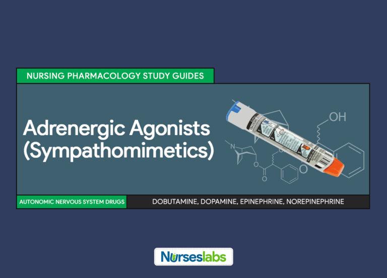 Adrenergic Agonists (Sympathomimetics) Nursing Pharmacology Study Guides