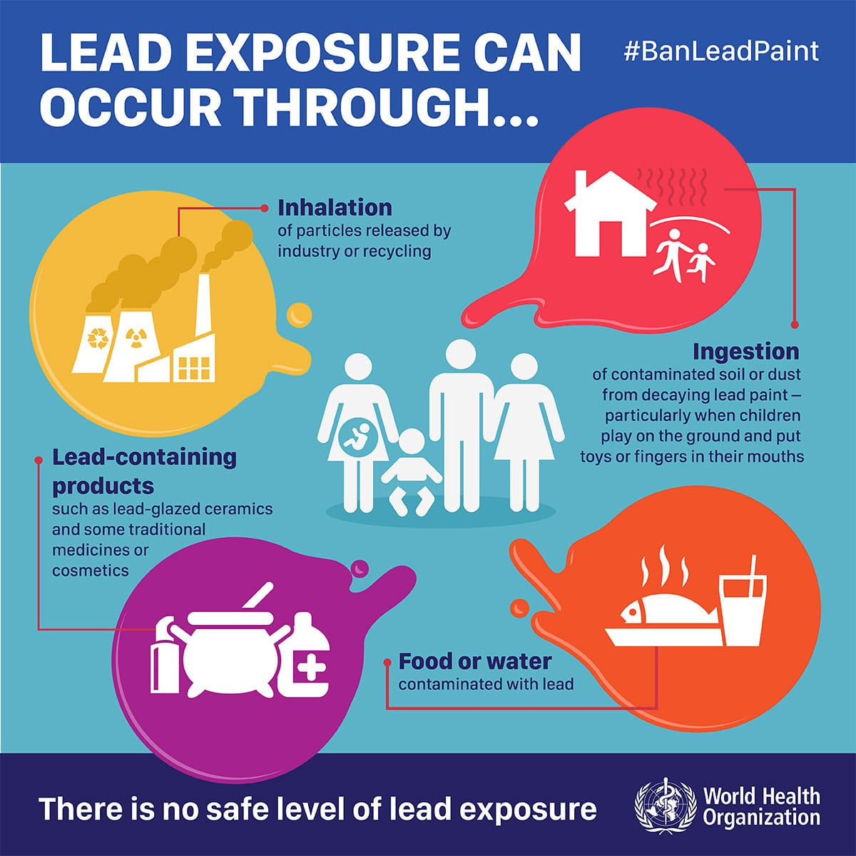 Lead poisoning nursing care planning and management for When was lead paint banned