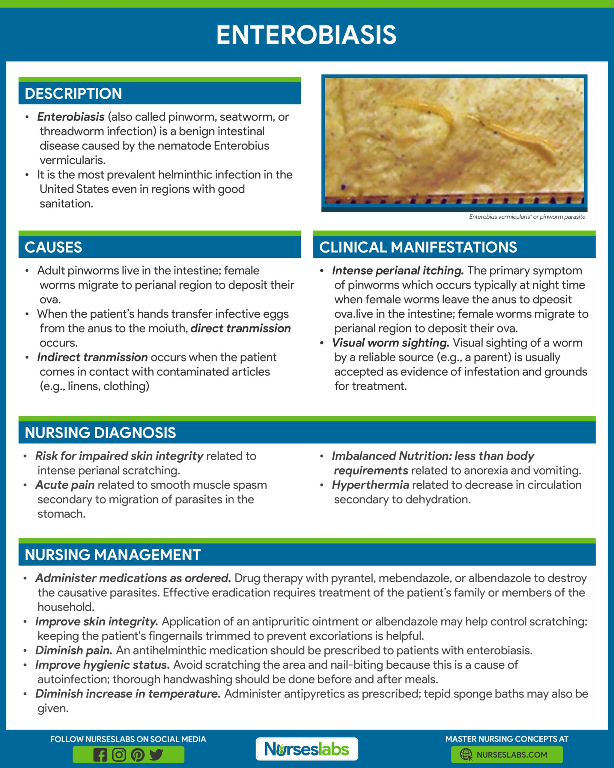 Enterobiasis Nursing Care Management and Care Planning Infographic Poster