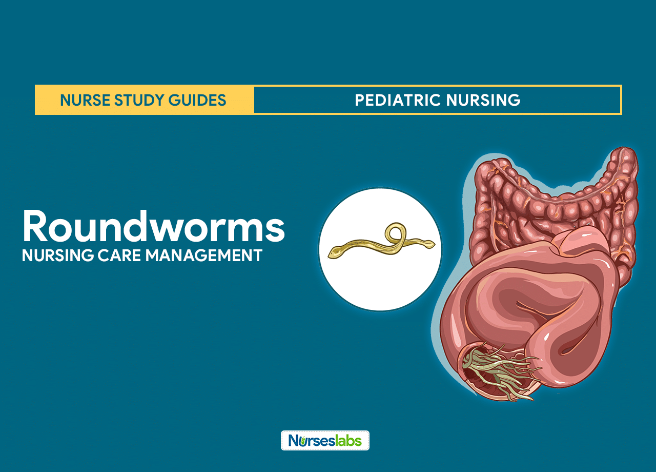 Roundworms (Ascariasis) Nursing Care Management