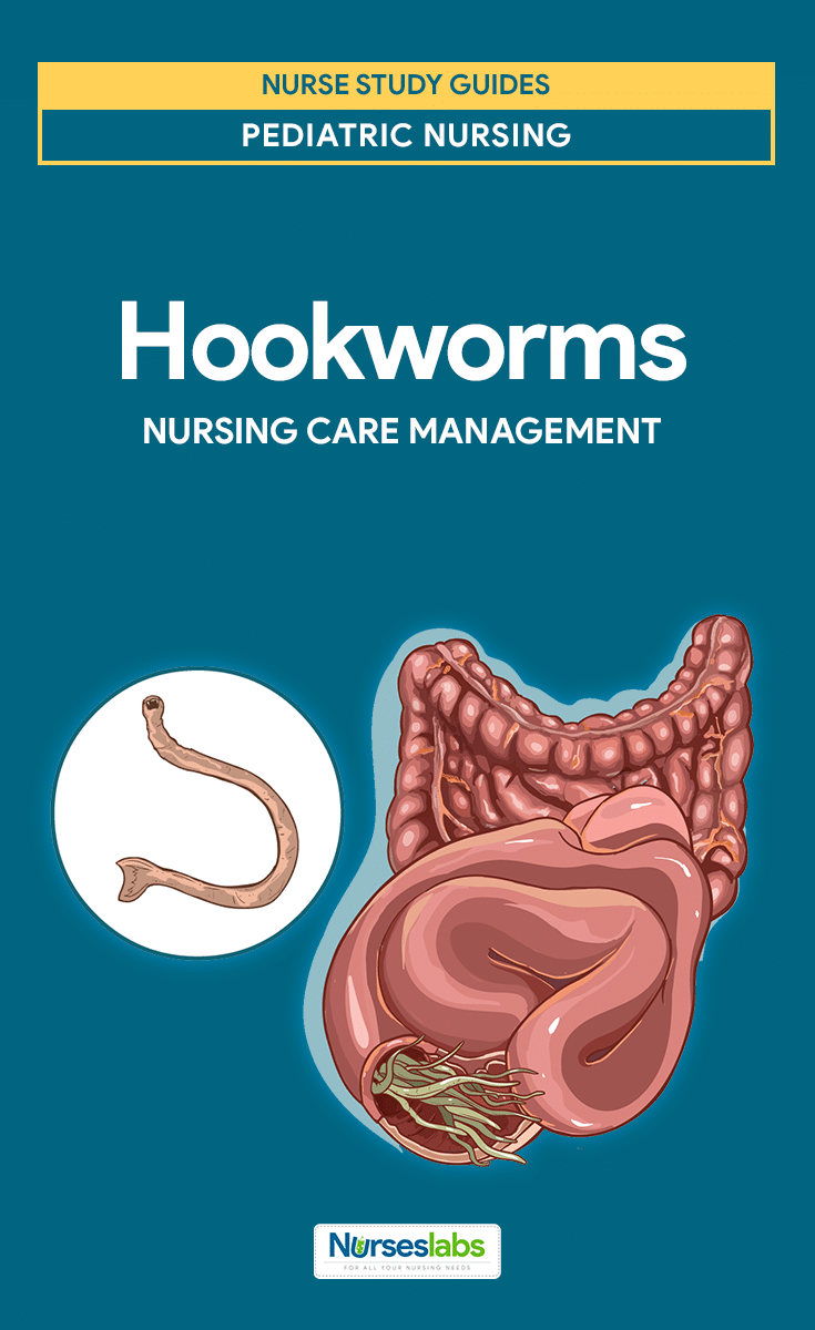 Hookworm Infection Nursing Care Management