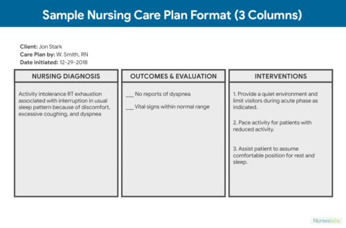 3 Column Care Plan Template