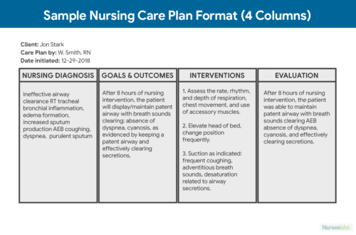 4 Column Care Plan Format and Template