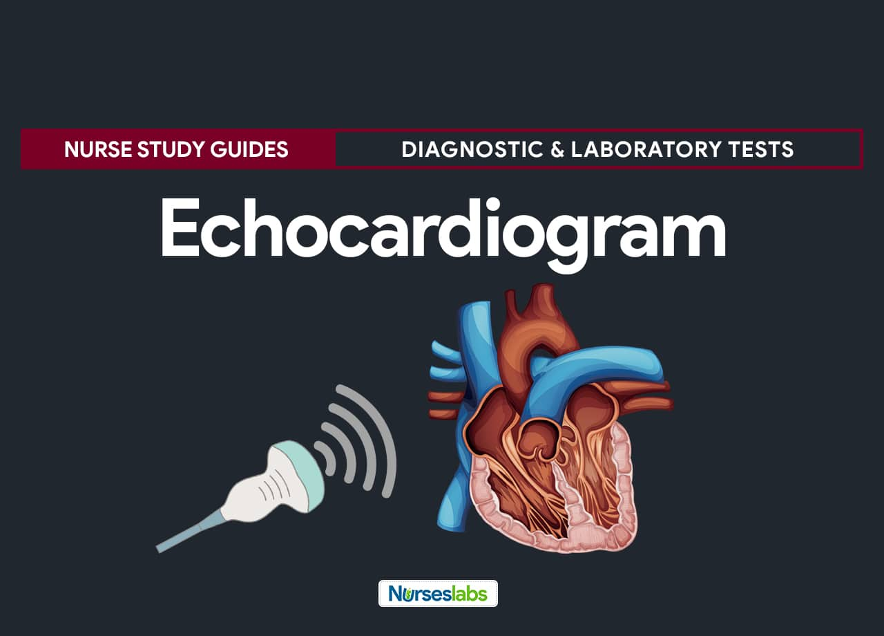 Echocardiogram - Echocardiography Diagnostic and Laboratory Procedure - Nursing Care Management and Responsibilities