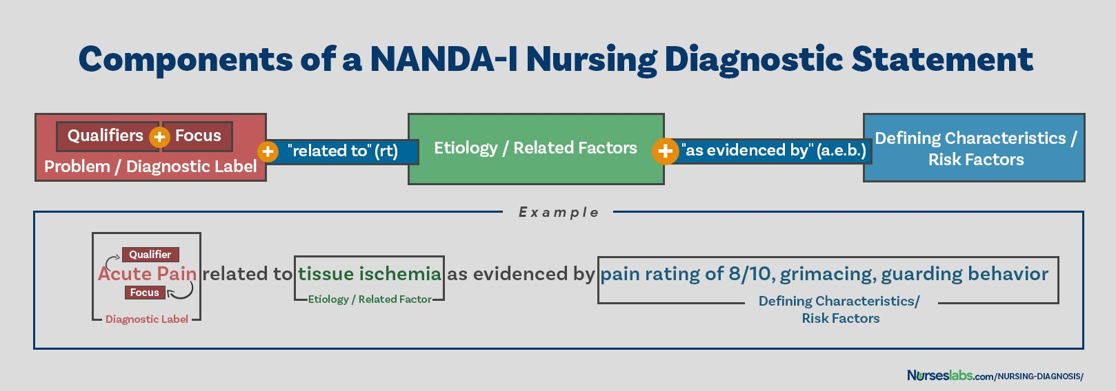 Components of a Nursing Diagnosis Statement: problem, etiology, and defining characteristics.