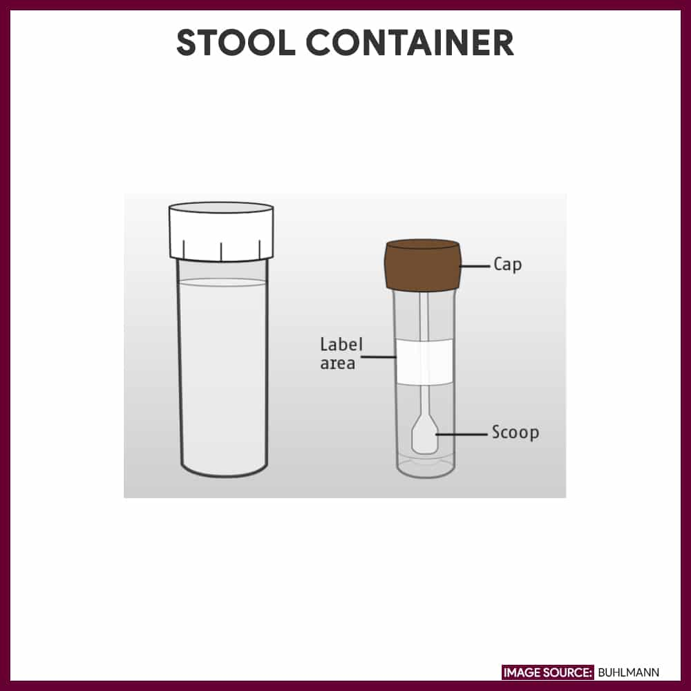 Stool container