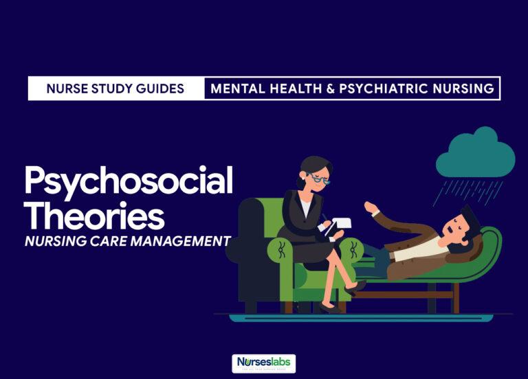 Psychosocial Theories Nursing