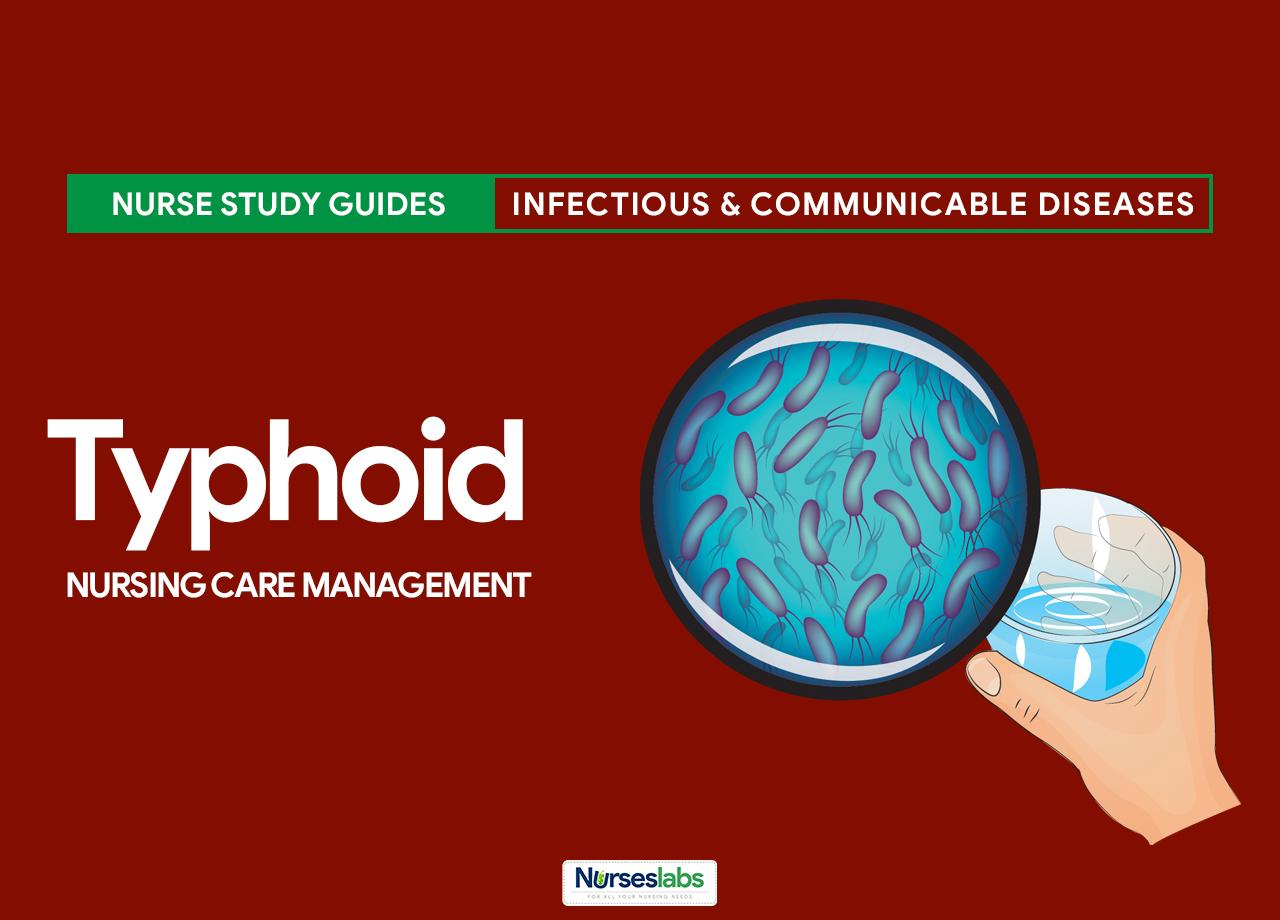 Typhoid Fever Nursing Care Management